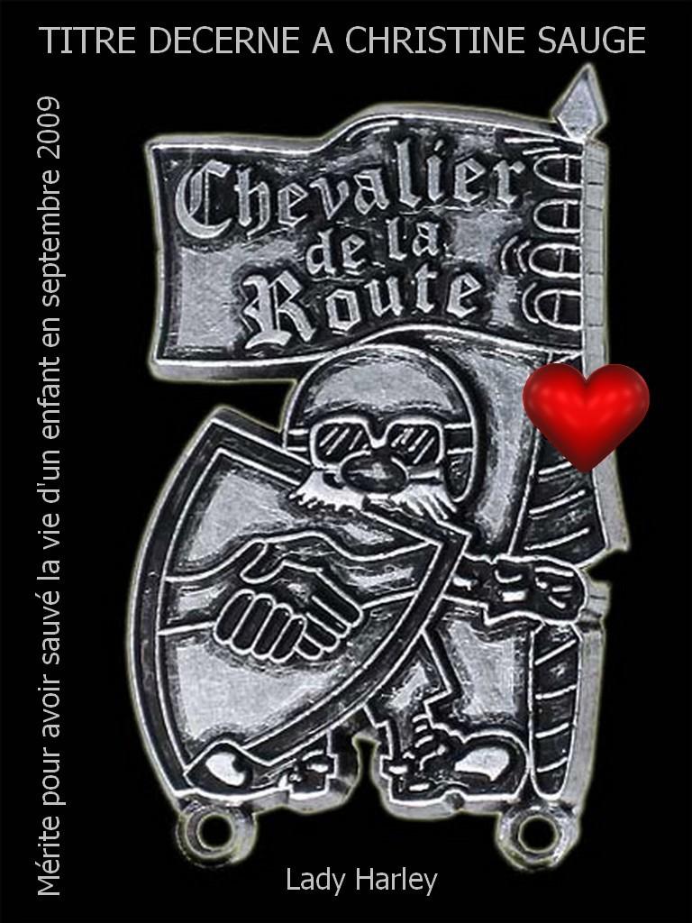 Mérite Chevalier 2009